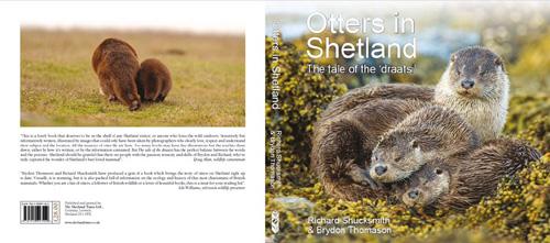 Otters of Shetland