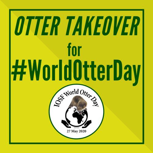 Otter Takeover